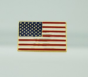 American Flag Neutral Position Cloisonne USA Stars and Stripes Pin | Patriotic Pins
