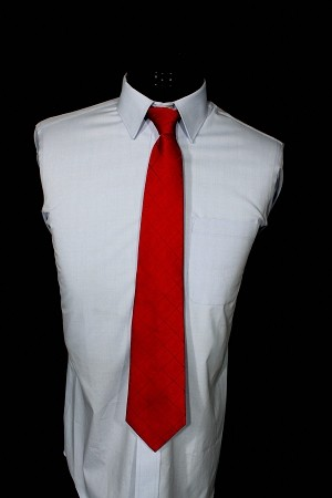 Royal Arch Red On Red Chapter Tie